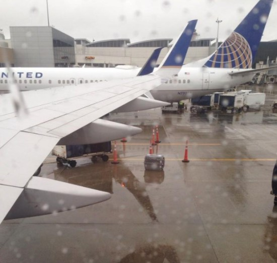 United Airlines Leaves Caged Dog In Pouring Rain For Half Hour