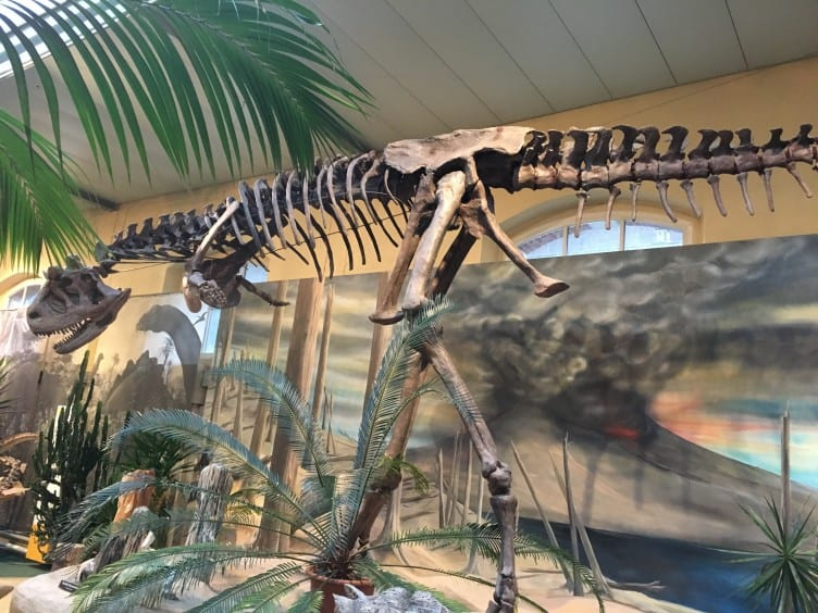When looking for a Dinosaur Museum in Switzerland for the children, there is no better choice than the SaurierMuseum, outside of Zurich.