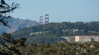 The Golden Gate Bridge as seen from the top of Strawberry Hill