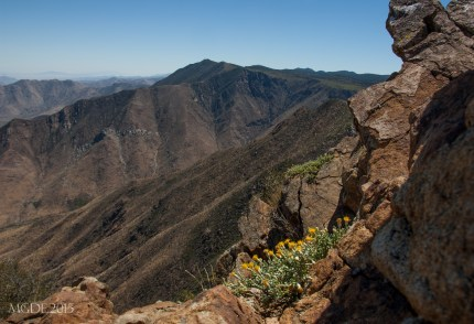 Laguna Observatory and Monument Peak to the south as seen from the summit.