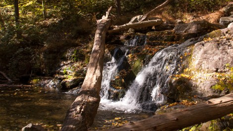 Naturally gorgeous Dunnfield Creek waterfalls.