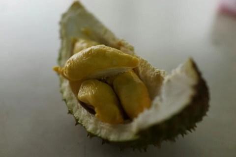 雨季が旬のドリアンは身体を温める効果で不妊にも最適!食べすぎるとヤバイらしいけどw