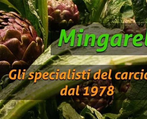 Ortofrutta Mingarelli