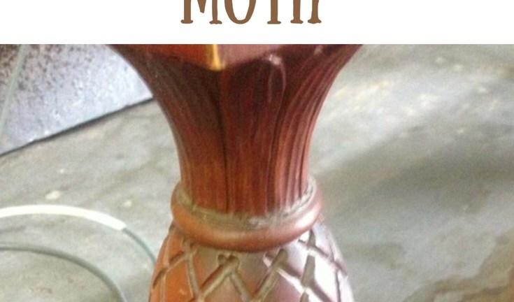 The Pineapple Motif