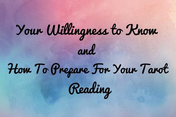 Your Willingness To Know - Tara Nikita