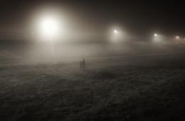 fog-jungle-calais