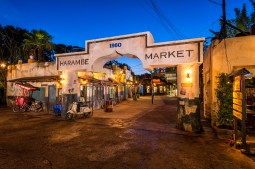 Harmabe Market at Disney's Animal Kingdom