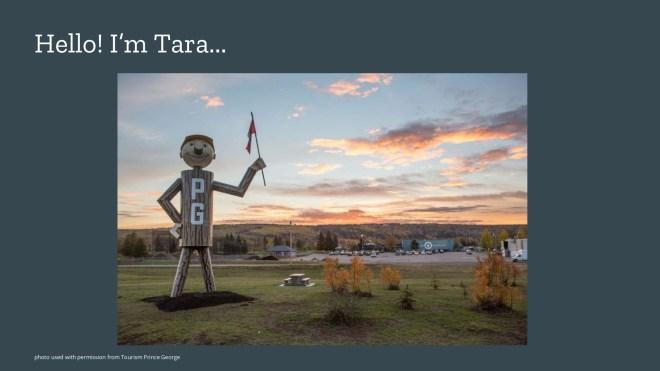 Hello, I'm Tara...giant smiling log man with a beautiful sunset