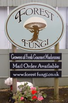 Forest Fungi Farm Shop, Dawlish Warren