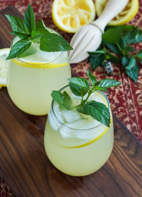 Shikanji (Indian Lemonade) (1 of 3)