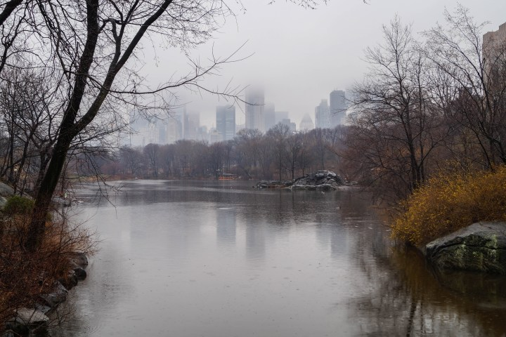 Pond in Central Park with skyscrapers in background.