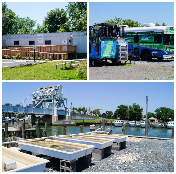 Outdoor view of Phillips Wharf Environmental Center with mobile buses, tanks along the waterfront, and trailer.
