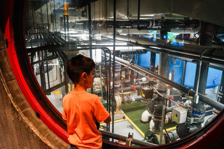 Looking at the National Aquarium's filtration system for the tanks.