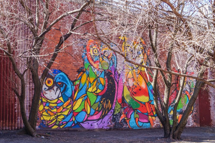 Mural of colorful owls on brick wall.