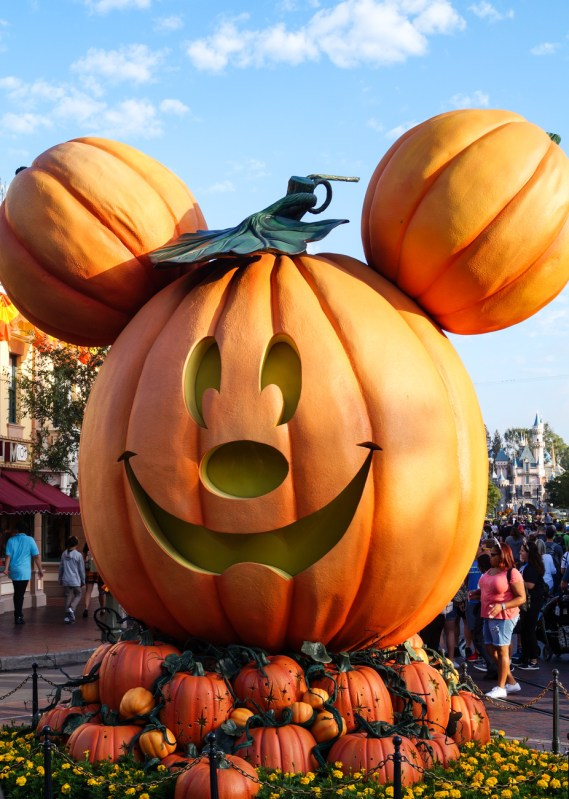 Big Mickey Mouse Pumpkin.