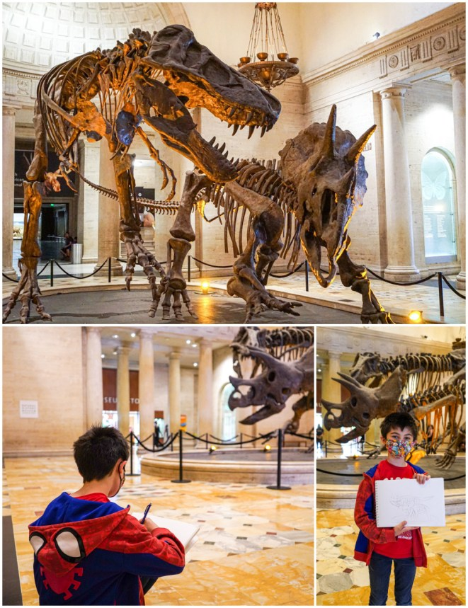Three photo collage of T. Rex and Triceratops fossils at the Natural History Museum.