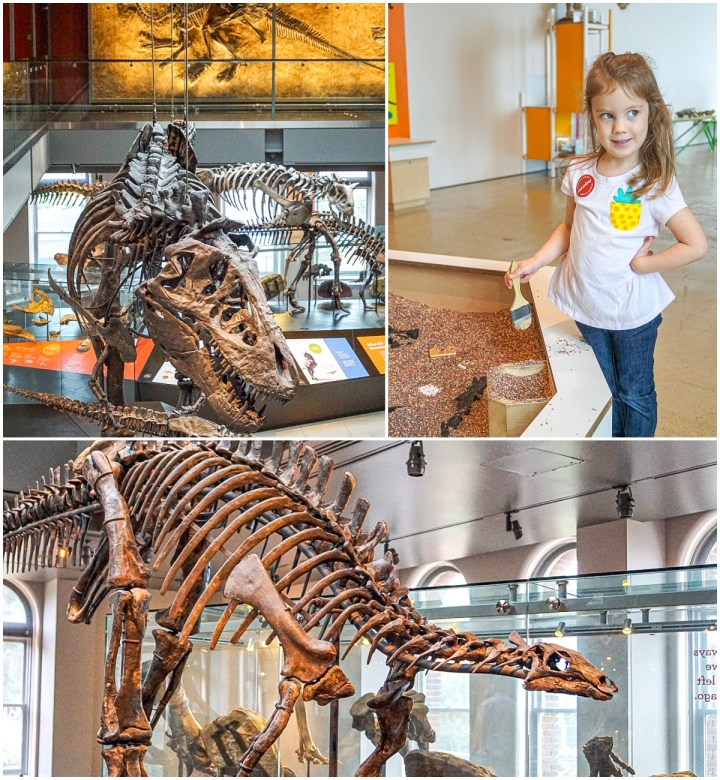 Three photo collage of Dinosaur Hall at the Natural History Museum with T Rex and Stegosaurus.