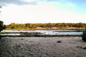 Giraffe bones along the Olifants River
