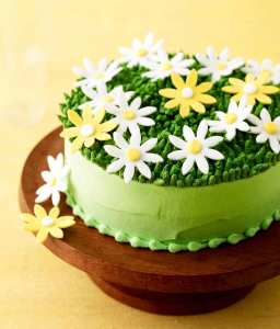 Spring green daisy cake on yellow background