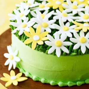 Spring Daisy Cake close up of green frosting.