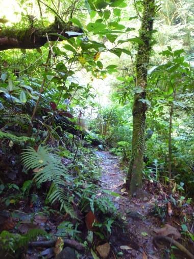 6 Nabontolan Falls 2