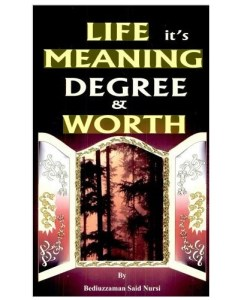 life meaning degree and worth
