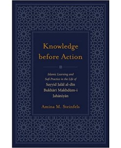 Knowledge Before Action by Amina M. Steinfels