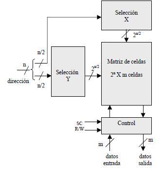 Organización 3D