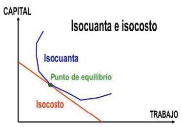Relación de isocuantas e isocostos