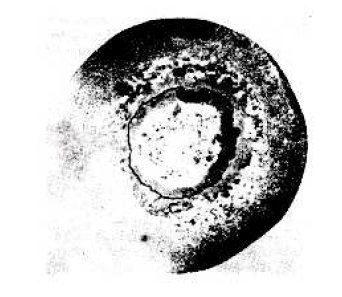 barra redonda con d esprendimiento del núcleo