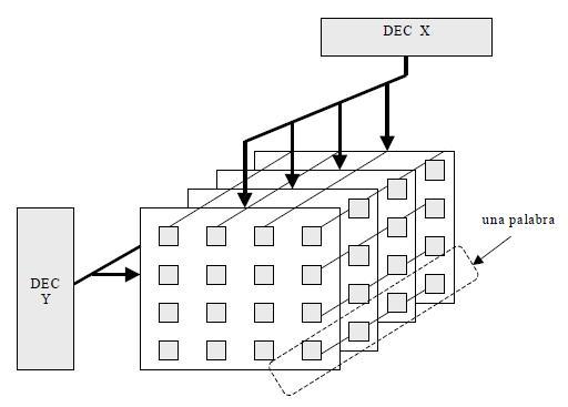 matrices de celdas básicas