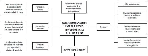 Normas internacionales para el ejercicio