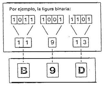 Ligura binaria