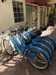Bikes for Free Rental