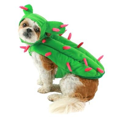 Cactus Dog Costume Set