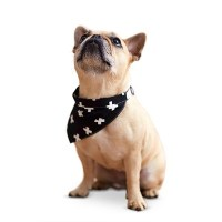 Dog Clothes & Accessories