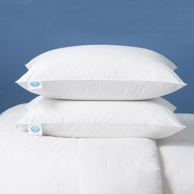 goose down pillow target