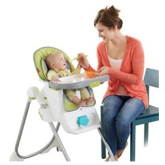 Ingenuity High Chair Canada Reviews Knoll Bulldog Fisher Price 4 In 1 Total Clean Target