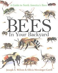 Bees in Your Backyard : A Guide to North America's Bees (Paperback) (Joseph S. Wilson)