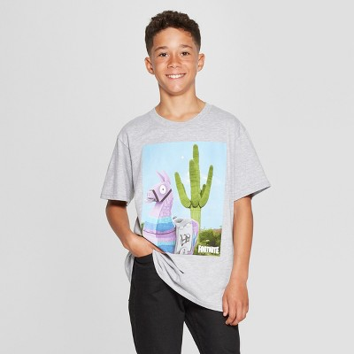 Boys' Fortnite Loot Llama Cactus Short Sleeve T-Shirt - Heather Gray