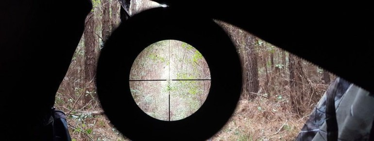 Buying a Rifle Scope