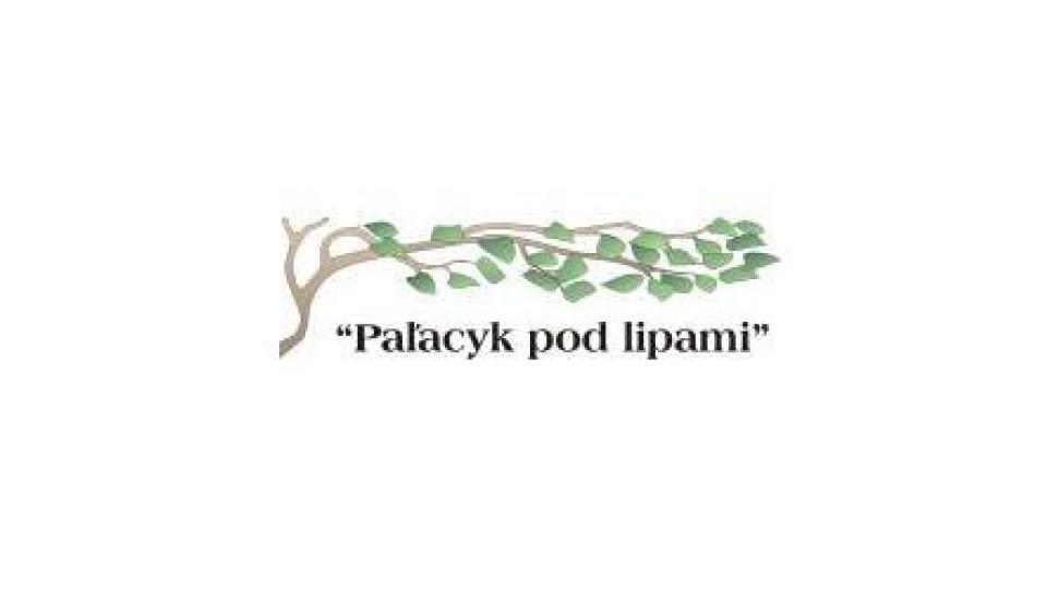 palacyk logo