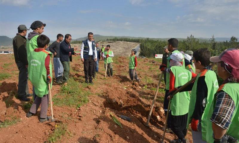 """Mersin'de İşgal Edilmek İstenen Ormanlık Alan """"İdlib Şehitleri Hatıra Ormanı"""" Oldu"""