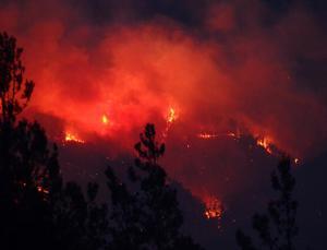 3 İlde Orman Yangınlarını Söndürme Çalışmaları Sürüyor