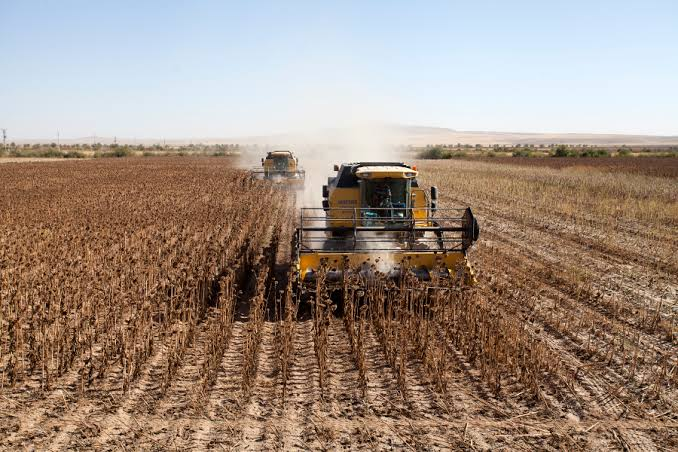Tarım İşletmeleri 16 Şehre 100 Sürekli İşçi Alacak