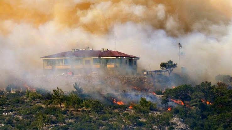 Kocaeli'de de Yangın Çıktı! 30 Dönüm Ormanlık Alan Yandı