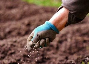 TZOB: Gübre Fiyatlarındaki Sert Artışlar Enflasyon Olarak Geri Dönecek