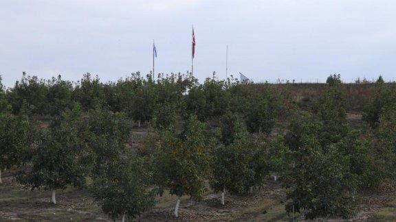 Bu Sorun Çözülürse Hepsi Kullanılabilir Tarım Arazisi Olacak: Hollanda'nın Yüzölçümü Kadar Büyük