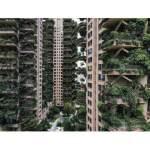 Çin'de yeşil konut projesi kabusa dönüştü