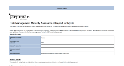 Risk maturity assessment report image